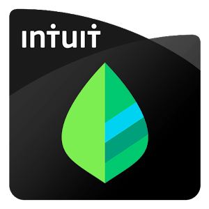 Mint-Best Budgeting Apps